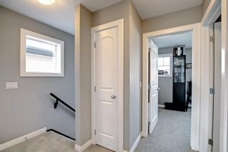Photo 31: 180 Evanspark Gardens NW in Calgary: Evanston Detached for sale : MLS®# A1144783