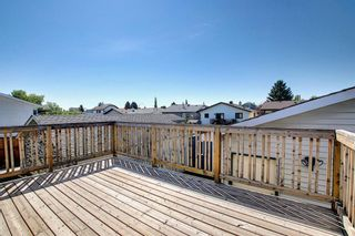 Photo 45: 2115 24 Avenue NE in Calgary: Vista Heights Detached for sale : MLS®# A1018217