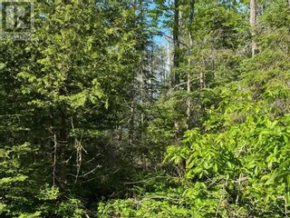 Photo 17: PT LT 58, Con 1 Manitou Shores in Assiginack: Vacant Land for sale : MLS®# 2095659