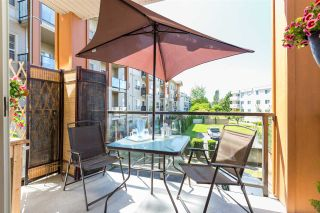 """Photo 16: 212 20219 54A Avenue in Langley: Langley City Condo for sale in """"Suede"""" : MLS®# R2273504"""