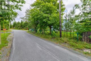 Photo 23: 8 Blackberry Crescent in Torbay: House for sale : MLS®# 1236499