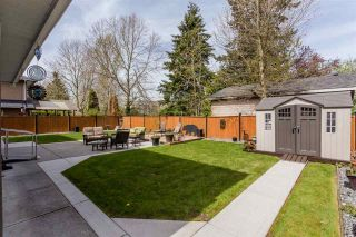 Photo 17: 22345 47A Avenue in Langley: Murrayville House for sale : MLS®# R2278404