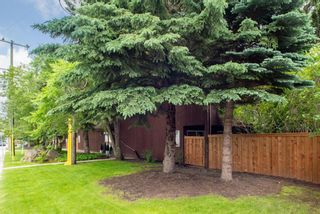 Photo 24: 102 1001 68 Avenue SW in Calgary: Kelvin Grove Apartment for sale : MLS®# A1010875