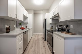 """Photo 9: 105 8139 121A Street in Surrey: Queen Mary Park Surrey Condo for sale in """"THE BIRCHES"""" : MLS®# R2623168"""