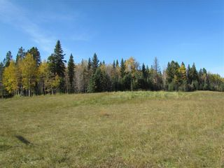 Photo 6: TWP Rd 310: Rural Mountain View County Land for sale : MLS®# C4292828