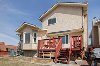 Photo 26: 3 Maple Way SE: Airdrie Detached for sale : MLS®# A1100248
