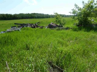 Photo 30: 57525 Rg Rd 214: Rural Sturgeon County Rural Land/Vacant Lot for sale : MLS®# E4266088