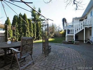 Photo 16: 4021 Hessington Pl in VICTORIA: SE Arbutus House for sale (Saanich East)  : MLS®# 693379