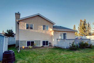 Photo 43: 249 Hawkstone Drive NW in Calgary: Hawkwood Detached for sale : MLS®# A1150225