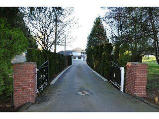 Photo 35: 20981 132ND Avenue in Maple Ridge: Northwest Maple Ridge House for sale : MLS®# V1116009
