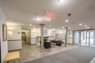 Photo 21: 405 525 56 Avenue SW in Calgary: Windsor Park Apartment for sale : MLS®# A1143592