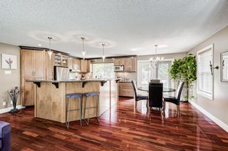 Photo 4: 20 Pineland Bay NE in Calgary: Pineridge Detached for sale : MLS®# A1108452