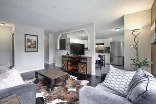 Photo 5: 110 Abalone Crescent NE in Calgary: Abbeydale Detached for sale : MLS®# A1127524