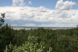 Photo 2: 35 MacDonald Drive in Rural Stettler No. 6, County of: Rural Stettler County Detached for sale : MLS®# A1122917