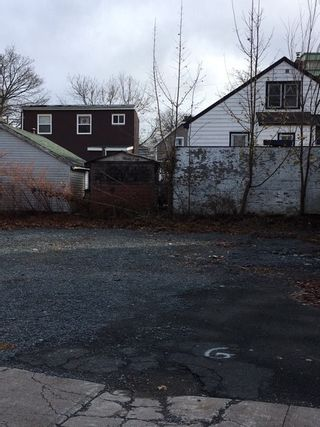 Photo 7: 5528 Kaye Street in Halifax: 3-Halifax North Vacant Land for sale (Halifax-Dartmouth)  : MLS®# 201926305