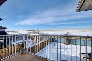 Photo 33: 260 SPRINGMERE Way: Chestermere Detached for sale : MLS®# A1073459