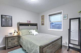 Photo 23: 207 Hawkmere View: Chestermere Detached for sale : MLS®# A1072249