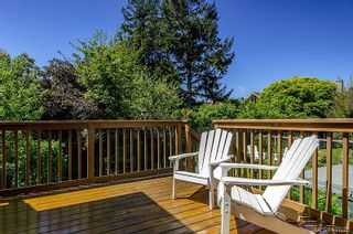 Photo 16: 1230 Chapman St in : Vi Fairfield West House for sale (Victoria)  : MLS®# 611288