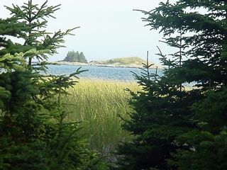 Photo 7: 0 Moshers Island Road in LaHave River: 405-Lunenburg County Vacant Land for sale (South Shore)  : MLS®# 202111805