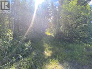 Photo 16: LOT 4 WILCOX ROAD in Forest Grove: Vacant Land for sale : MLS®# R2595645