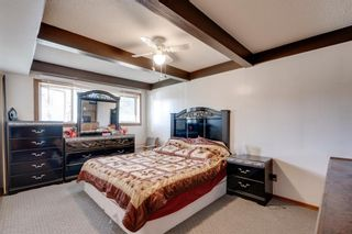 Photo 15: 2140 8 Avenue NE in Calgary: Mayland Heights Detached for sale : MLS®# A1115319