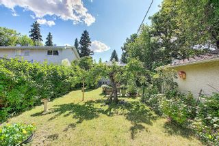 Photo 38: 10504 73 Avenue S in Edmonton: Zone 15 House for sale : MLS®# E4260891