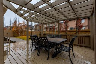 Photo 45: 256 EVERGREEN Plaza SW in Calgary: Evergreen House for sale : MLS®# C4144042