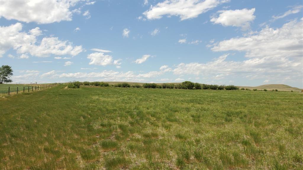 Main Photo: Range Road 263 in Rural Willow Creek No. 26, M.D. of: Rural Willow Creek M.D. Land for sale : MLS®# C4070513