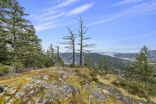 Photo 13: Lot A Armand Way in : GI Salt Spring Land for sale (Gulf Islands)  : MLS®# 871175