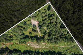 "Photo 6: 146 DOGHAVEN Lane in Squamish: Upper Squamish Land for sale in ""Upper Squamish"" : MLS®# R2602949"