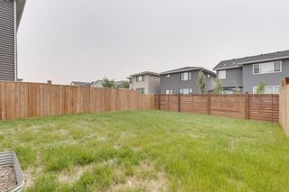 Photo 34: 17 Howse Terrace NE in Calgary: Livingston Detached for sale : MLS®# A1131746