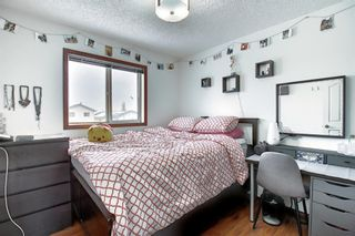 Photo 27: 47 Appleburn Close SE in Calgary: Applewood Park Detached for sale : MLS®# A1049300