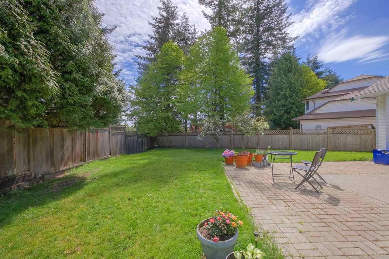 Photo 20: Photos: 10440 GLENMOOR Place in Surrey: Fraser Heights House for sale (North Surrey)  : MLS®# R2163233