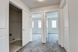 Photo 27: 216 Red Sky Terrace NE in Calgary: Redstone Detached for sale : MLS®# A1125516