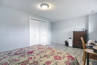 Photo 42: 155 Templevale Road NE in Calgary: Temple Detached for sale : MLS®# A1119165