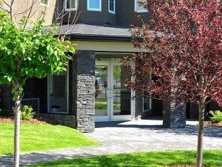 Photo 20: 101 201 20 Avenue NE in CALGARY: Tuxedo Condo for sale (Calgary)  : MLS®# C3577069