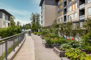"Photo 20: 509 9877 UNIVERSITY Crescent in Burnaby: Simon Fraser Univer. Condo for sale in ""Veritas"" (Burnaby North)  : MLS®# R2539241"