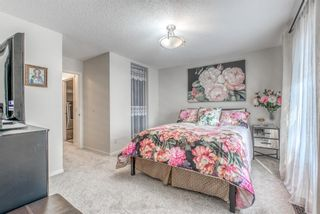 Photo 17: 262 Copperstone Circle SE in Calgary: Copperfield Detached for sale : MLS®# A1136994
