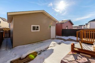 Photo 33: 360 COPPERPOND Boulevard SE in Calgary: Copperfield Detached for sale : MLS®# C4233493