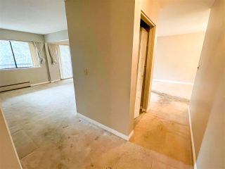 Photo 8: 304 1554 GEORGE Street: White Rock Condo for sale (South Surrey White Rock)  : MLS®# R2573966