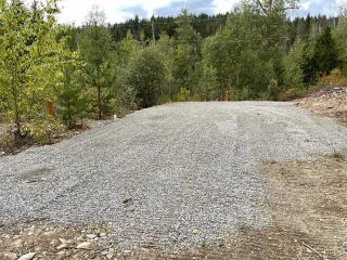 Photo 4: 292 Terry Road, in Enderby: Vacant Land for sale : MLS®# 10239679