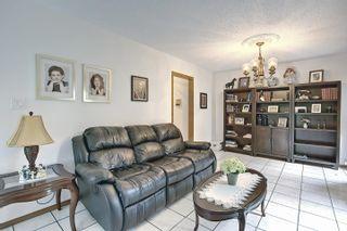 Photo 12: 55302 Rg Rd 233: Rural Sturgeon County House for sale : MLS®# E4255473