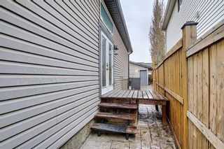Photo 12: 312 Mt Aberdeen Close SE in Calgary: McKenzie Lake Detached for sale : MLS®# A1046407