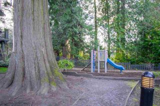 """Photo 10: 61 6123 138 Street in Surrey: Sullivan Station Townhouse for sale in """"Panorama Woods"""" : MLS®# R2567161"""