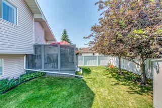 Photo 28: 206 Citadel Gardens NW in Calgary: Citadel Detached for sale : MLS®# A1126315