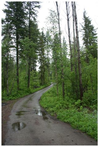 Photo 50: 1400 Southeast 20 Street in Salmon Arm: Hillcrest Vacant Land for sale (SE Salmon Arm)  : MLS®# 10112895