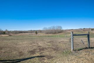 Photo 11: 30092 Bunny Hollow Drive in Rural Rocky View County: Rural Rocky View MD Detached for sale : MLS®# A1104471