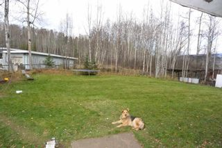 Photo 15: 5251 N FIRST Avenue: Hazelton House for sale (Smithers And Area (Zone 54))  : MLS®# R2246166