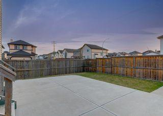 Photo 41: 135 SADDLERIDGE Close NE in Calgary: Saddle Ridge Detached for sale : MLS®# A1101462