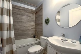 Photo 41: 82 Nolan Hill Drive NW in Calgary: Nolan Hill Detached for sale : MLS®# A1042013